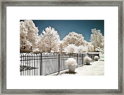 Surreal Dreamy Color Infrared Nature And Fence  Framed Print by Kathy Fornal