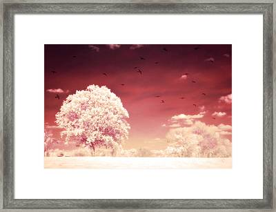 Surreal Fantasy Dreamy Infrared Nature Landscape Framed Print by Kathy Fornal