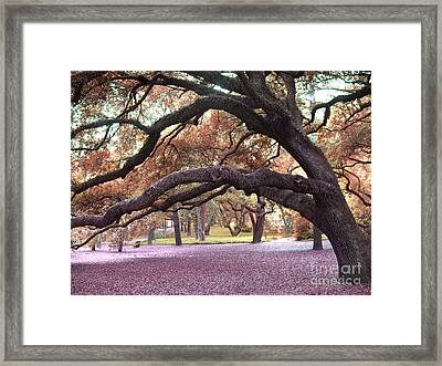 Surreal Old Oak Tree South Carolina Fall Colors Framed Print by Kathy Fornal