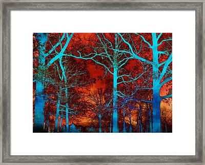 Surreal Orange Sky With Blue Trees Landscape Framed Print by Kathy Fornal