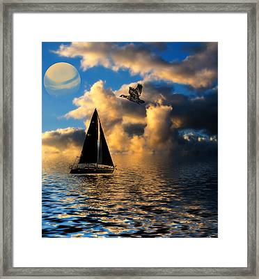 Surreal Seaside Framed Print by Cindy Haggerty