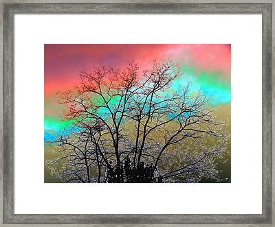 Surreal Winter Sky Framed Print by Will Borden