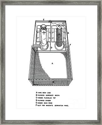 Surrogate Home Cage Framed Print by Science Source