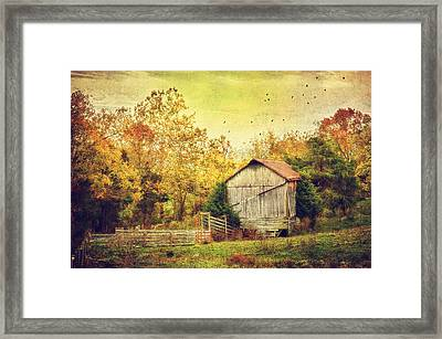 Surrounded By Fall Framed Print by Kathy Jennings