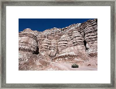 Framed Print featuring the photograph Survival In The Wilderness by Karen Lee Ensley