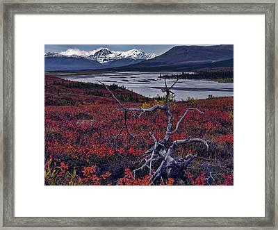 Susitna River Framed Print