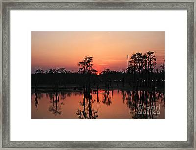 Framed Print featuring the photograph Swamp Sunset by Luana K Perez