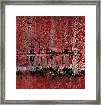 Swamp With Sin Framed Print by Jerry Cordeiro