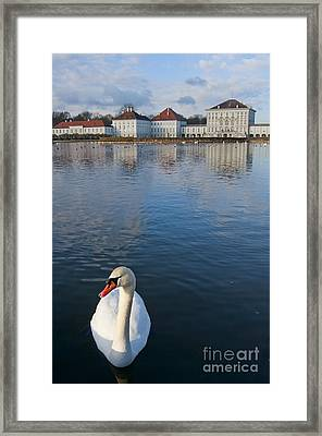 Swan At The Palace Framed Print by Andrew  Michael