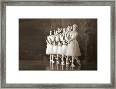 Swans Lined Up Framed Print by Kenneth Mucke