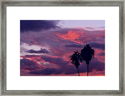 Swaying To The Blues Framed Print