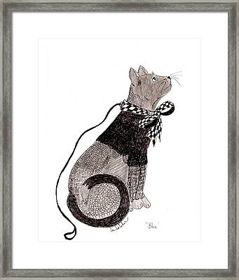 Framed Print featuring the drawing Sweater Cat Named Blue by Lou Belcher