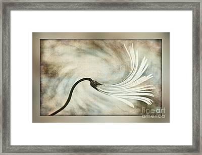 Sweeping Petals Framed Print by Kaye Menner