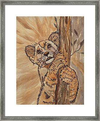 Sweet Baby Framed Print by Connie Valasco