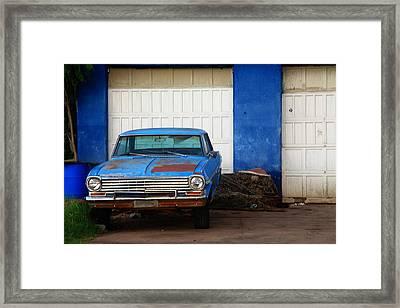 Sweet Blue Framed Print