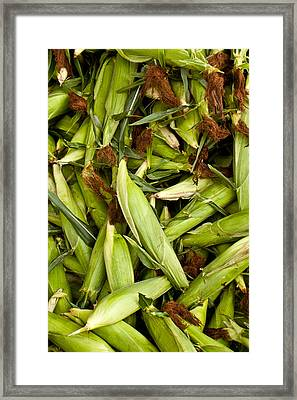 Sweet Corn Framed Print