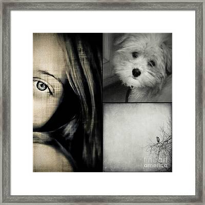 Sweet Dreams Framed Print by Annie Lemay