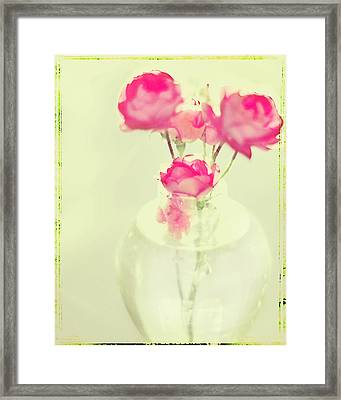Sweet Fairy Rose Framed Print by Linde Townsend