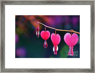 Sweet Hearts Framed Print