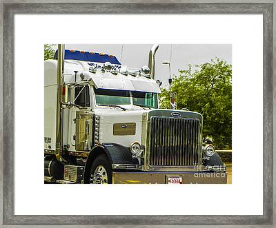 Sweet Pete Framed Print by Chuck Re