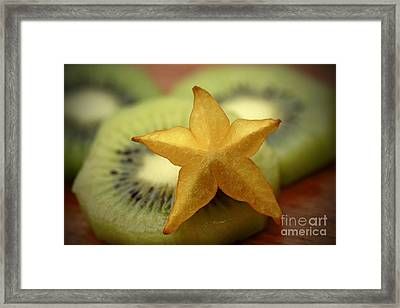 Sweet Pleasures Framed Print by Inspired Nature Photography Fine Art Photography