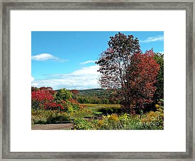 Framed Print featuring the photograph Sweet Scent Of Autumn by Christian Mattison