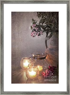 Sweet Williams Faded. Framed Print by Jane Rix