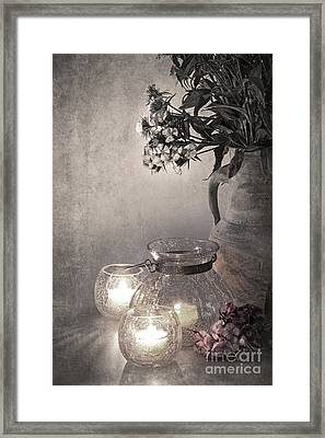 Sweet Williams Sepia Framed Print by Jane Rix
