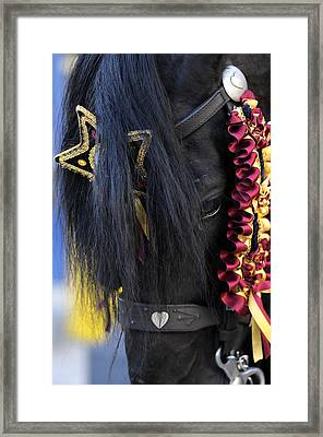 sweetheart - a Menorca race horse with traditional multicolor ribbons and mirror star Framed Print