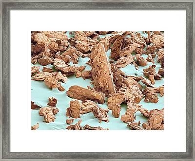 Sweet'n Low Sweetener, Sem Framed Print by Thomas Deerinck, Ncmir