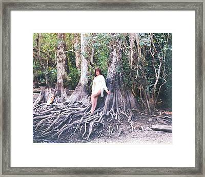 Sweetwater Strand 001 Framed Print by Lucky Cole