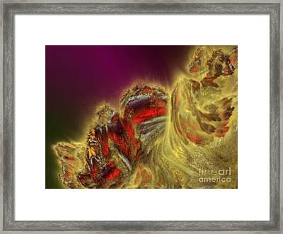 Swept Away Framed Print by Vicki Lynn Sodora