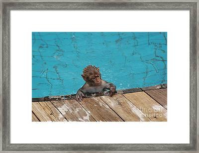 Swim Boy Framed Print by Yury Bashkin