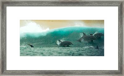 Swim Thru Framed Print
