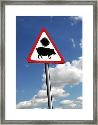 Swine Flu Warning, Conceptual Image Framed Print by Victor Habbick Visions