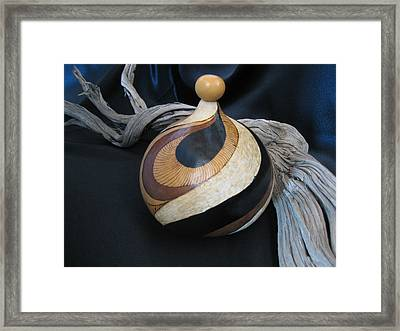 Swirl Gourd 2 #gn30 Framed Print by Barbara Prestridge
