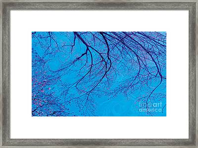 Swirling Spring Winds Framed Print