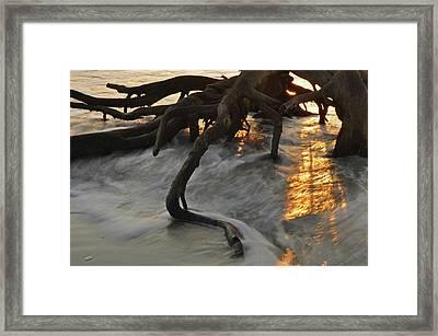 Swirling Sunrise On Jekyll Island Framed Print