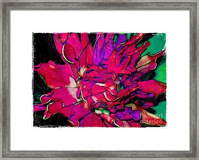 Swirly Fabric Flower Framed Print by Judi Bagwell