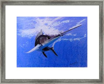 sword Fish Framed Print by David Hawkes