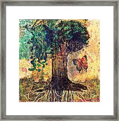 Symbolically Solid Tree Framed Print by Paulo Zerbato