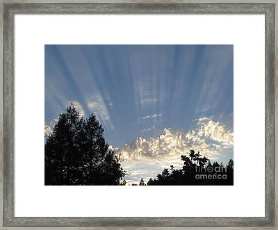 Symphonic Photography Framed Print by Tina Marie