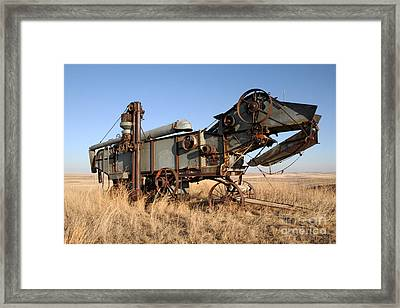 T-rex Of The Farm Framed Print by Edward R Wisell
