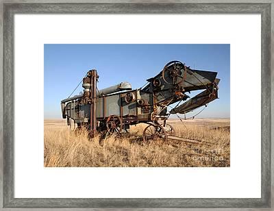T-rex Of The Farm Framed Print