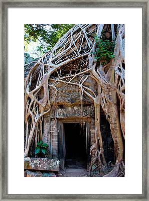 Ta Prohm Temple In Angkor, Cambodia Framed Print