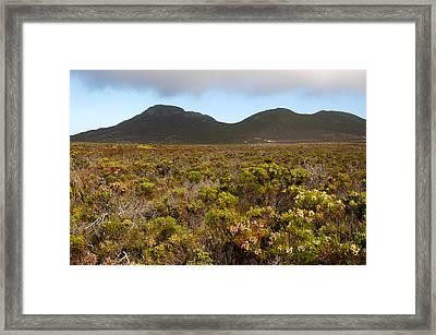 Table Mountain National Park Framed Print