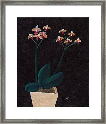 Table Orchid Framed Print by M Valeriano