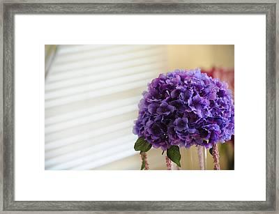 Tabletop Bloom Framed Print by Brandon McNabb