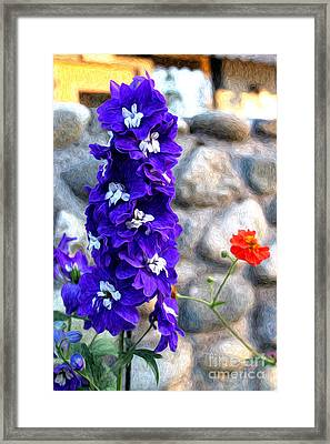 Framed Print featuring the photograph Tahoe City Flower by Anne Raczkowski