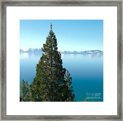 Tahoe Tranquility Framed Print